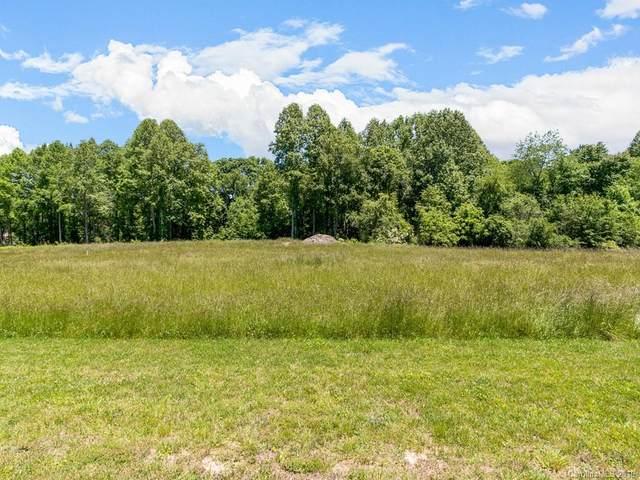 610 Skytop Farm Lane, Hendersonville, NC 28791 (#3508942) :: Rinehart Realty