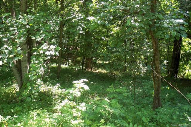 Lot 509 Multiflora Way, Waynesville, NC 28785 (#3510780) :: DK Professionals Realty Lake Lure Inc.
