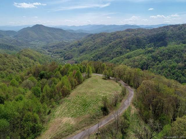 00 Wesley Creek Road, Clyde, NC 28721 (#3513656) :: Stephen Cooley Real Estate Group