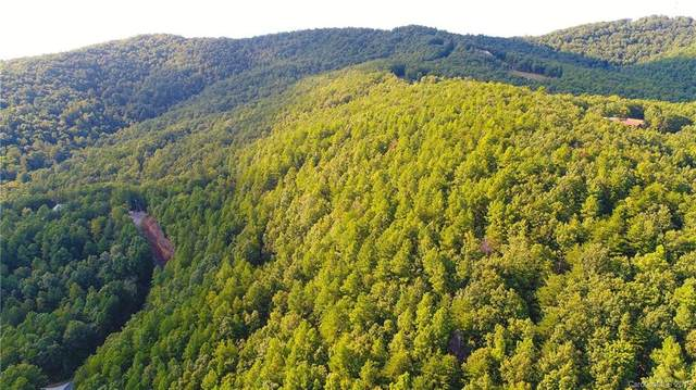 3421 South Peak Lane #64, Morganton, NC 28655 (#3513799) :: Mossy Oak Properties Land and Luxury