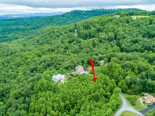 289 Coopers Drive #24, Hendersonville, NC 28739 (#3519841) :: Ann Rudd Group