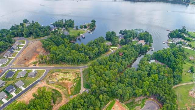 662 Sandbar Point #72, Lake Wylie, SC 29710 (#3523342) :: Robert Greene Real Estate, Inc.