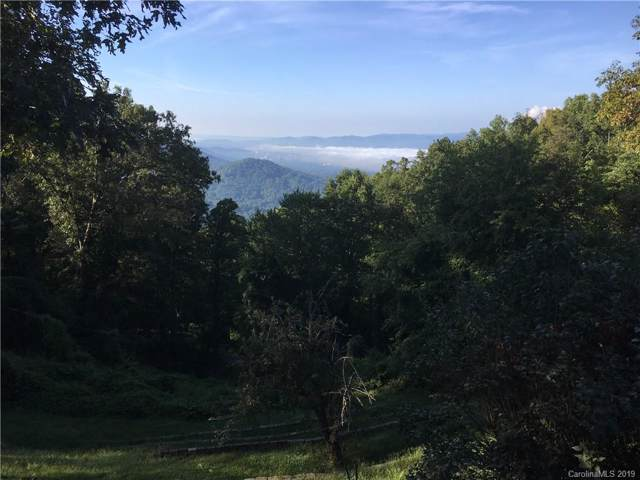 Lot 4 Elk Mountain Scenic Highway #4, Asheville, NC 28804 (#3527500) :: MartinGroup Properties