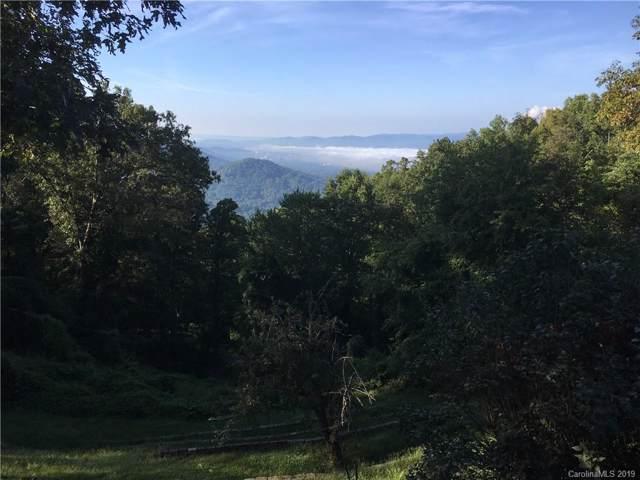 Lot 1 Elk Mountain Scenic Highway #1, Asheville, NC 28804 (#3527508) :: MartinGroup Properties