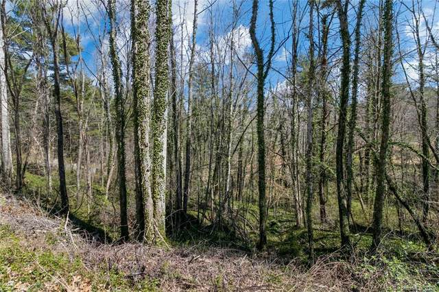 99999 Deep Woods Road #21, Weaverville, NC 28787 (#3539360) :: IDEAL Realty