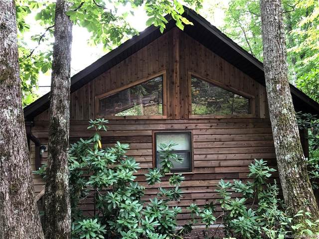 325 Hidden Cove Road, Maggie Valley, NC 28751 (#3539696) :: Carolina Real Estate Experts