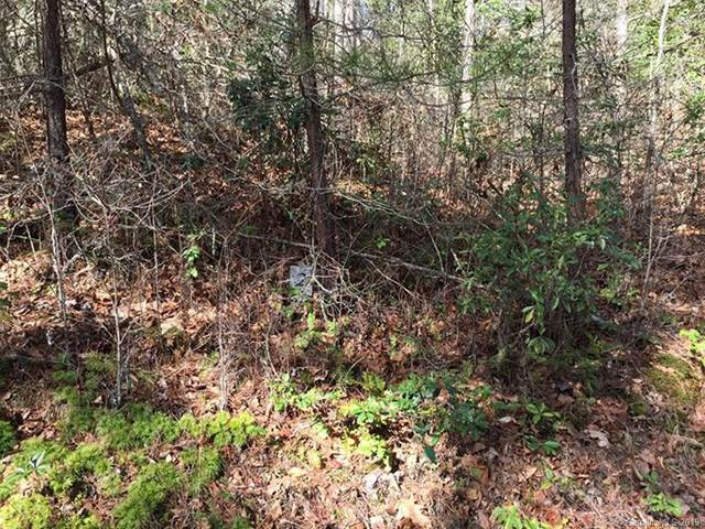 Lot #2 Jay Bird Drive #2, Sylva, NC 28779 (#3545430) :: Robert Greene Real Estate, Inc.