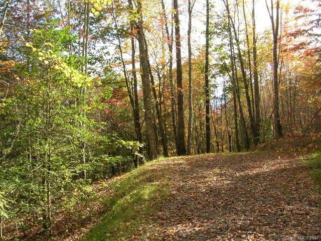 Lot #28 Thomas Divide Way #28, Bryson City, NC 28713 (#3546654) :: DK Professionals Realty Lake Lure Inc.