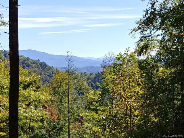 Lot #31 Thomas Divide Way #31, Bryson City, NC 28713 (#3546655) :: IDEAL Realty