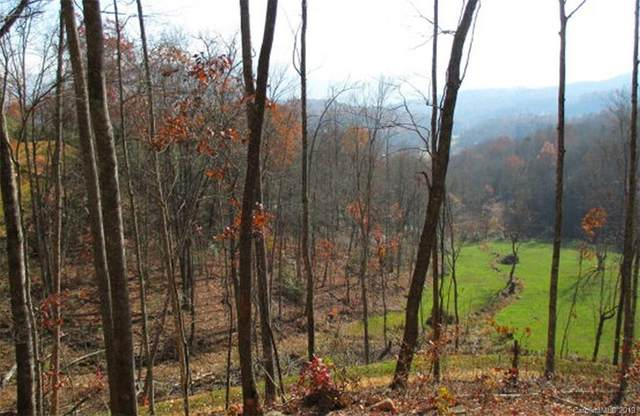 Lot #35 Noland Divide Trail #35, Bryson City, NC 28713 (#3546690) :: DK Professionals Realty Lake Lure Inc.