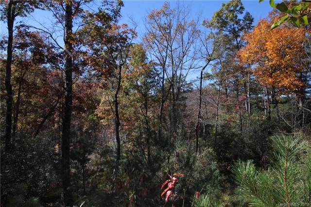Lot 9 Kelly Mountain Road #9, Brevard, NC 28712 (#3553225) :: Mossy Oak Properties Land and Luxury