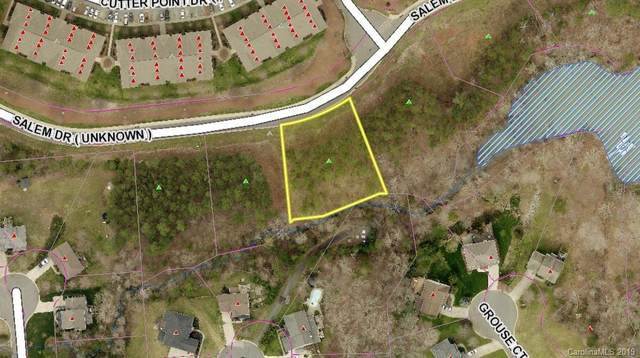 2149 Salem Drive, Lake Wylie, SC 29710 (#3553432) :: Mossy Oak Properties Land and Luxury