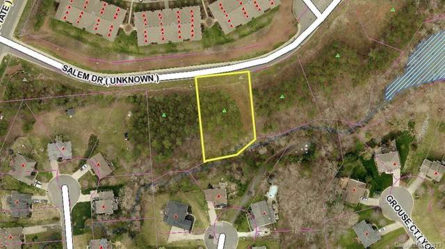 2159 Salem Drive, Lake Wylie, SC 29710 (#3553448) :: Mossy Oak Properties Land and Luxury