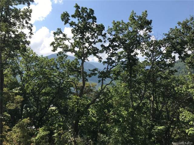 Lot 16 Cougar Lane #16, Maggie Valley, NC 28751 (#3554250) :: Homes Charlotte