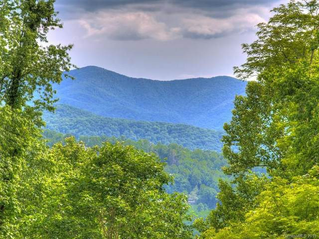 Lot 52 Twisted Trail, Waynesville, NC 28786 (#3555025) :: DK Professionals Realty Lake Lure Inc.