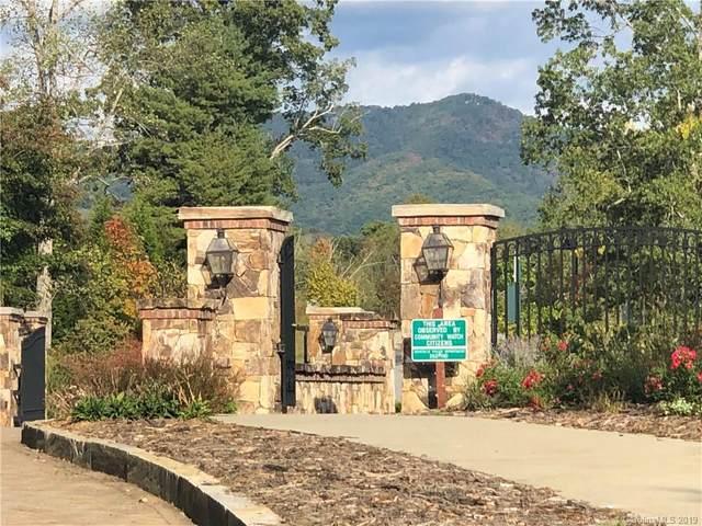 11 Magnolia View Trail, Asheville, NC 28804 (#3558866) :: Rinehart Realty