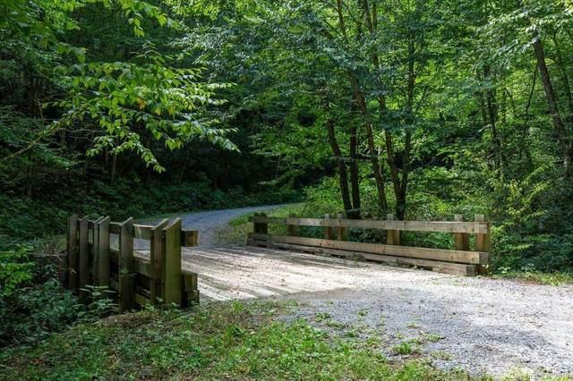 000 Cabin Flats Road, Balsam, NC 28707 (#3560245) :: TeamHeidi®