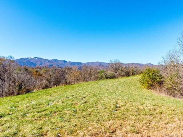 6690 Bear Creek Road, Marshall, NC 28753 (#3562656) :: NC Mountain Brokers, LLC