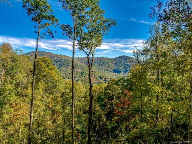 9999 Rambling Ridge Road #14, Asheville, NC 28804 (#3562932) :: High Performance Real Estate Advisors