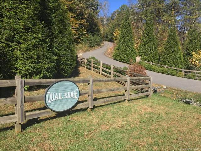 Lot 5 Covey Drive, Mars Hill, NC 28754 (#3563033) :: Exit Realty Vistas