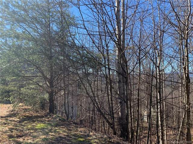 99999 Carriage Summitt Way #2438, Hendersonville, NC 28791 (#3565138) :: Caulder Realty and Land Co.
