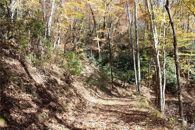 99999 Sequoia Trail, Leicester, NC 28748 (#3566682) :: Mossy Oak Properties Land and Luxury