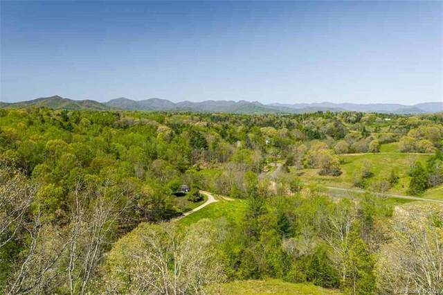 59 Sweet Fern Parkway #46, Asheville, NC 28804 (#3566891) :: Ann Rudd Group