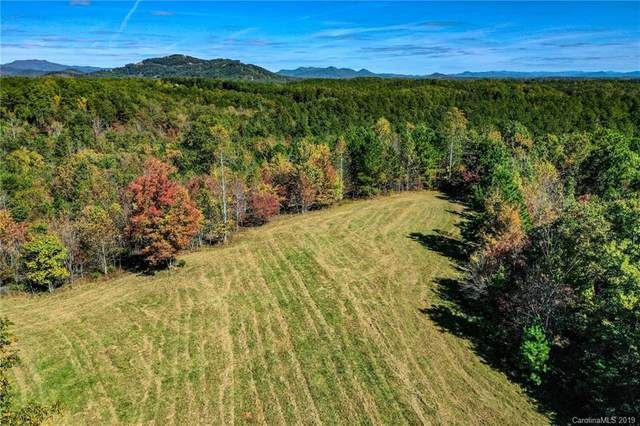 10.8 +/- Acres Coopers Trace, Mill Spring, NC 28722 (#3566962) :: Robert Greene Real Estate, Inc.