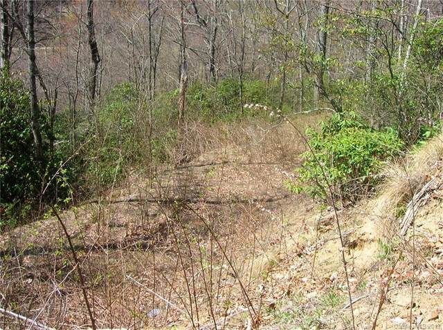 Lot 334 Paso Fino Drive, Maggie Valley, NC 28751 (#3567181) :: DK Professionals Realty Lake Lure Inc.
