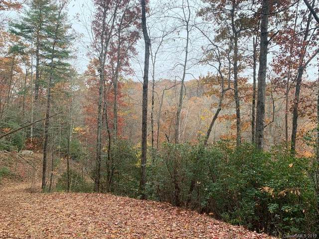 Lot 134 Green Hollow Lane, Brevard, NC 28712 (#3567472) :: Stephen Cooley Real Estate Group
