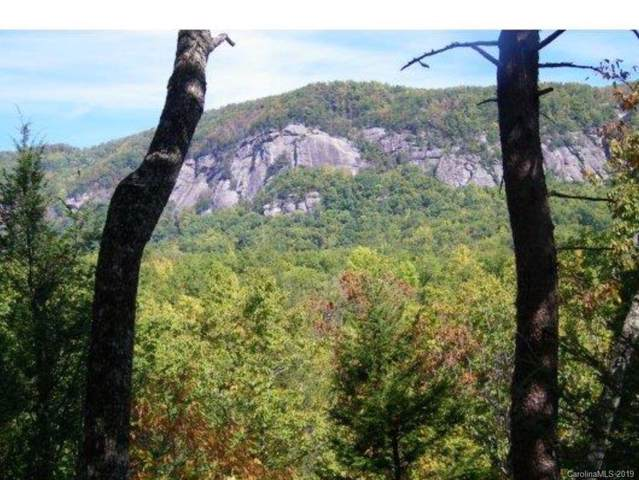 LOT 11 Mintwood Lane, Lake Lure, NC 28746 (#3570272) :: High Performance Real Estate Advisors