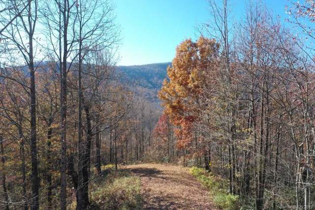 Lot T-74  1110 Kestrel Lane T-74, Black Mountain, NC 28711 (#3570440) :: Exit Realty Vistas