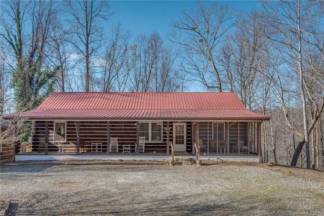 909 Pearson Falls Road, Saluda, NC 28773 (#3573867) :: Stephen Cooley Real Estate Group