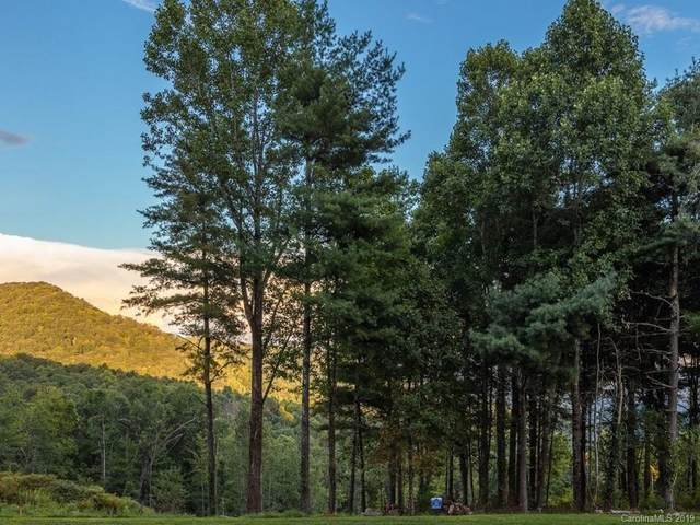 0 Dancing Bear Drive #183, Hendersonville, NC 28792 (#3574715) :: The Mitchell Team