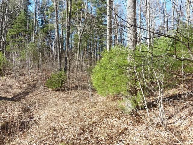 5 & 30 N Pointe Drive 5 & 30, Zirconia, NC 28790 (#3576535) :: Modern Mountain Real Estate