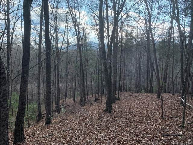 229 Lake Adger Parkway, Mill Spring, NC 28756 (#3578350) :: Caulder Realty and Land Co.