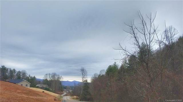 Lot 6 Blackberry Cove Drive #6, Mars Hill, NC 28754 (MLS #3581501) :: RE/MAX Journey