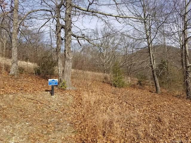 117 Autumn Sky Drive, Hendersonville, NC 28792 (#3581801) :: The Snipes Team | Keller Williams Fort Mill