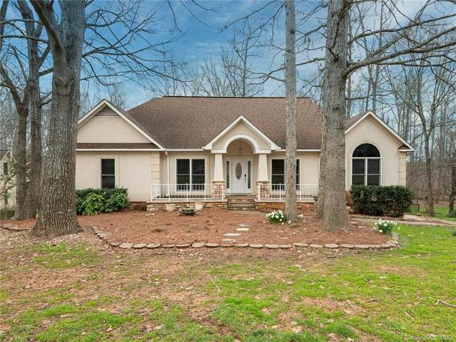 10707 Bristlecone Court, Mint Hill, NC 28227 (#3586669) :: The Premier Team at RE/MAX Executive Realty