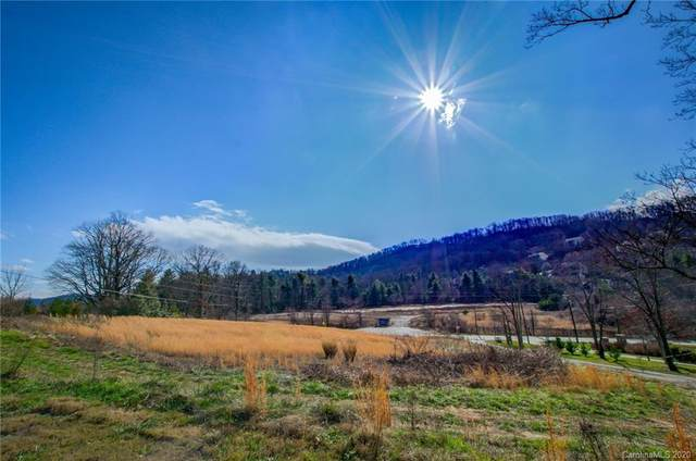 238A Mills Gap Road, Asheville, NC 28803 (#3587270) :: BluAxis Realty