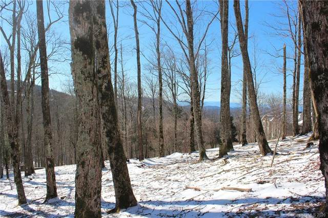 000 Hanging Rock Road, Mars Hill, NC 28754 (#3588143) :: BluAxis Realty