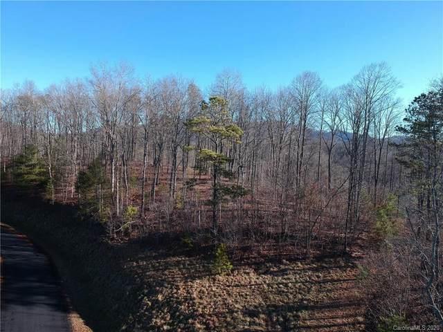 0 Wild River Run #65, Marshall, NC 28753 (#3588166) :: LePage Johnson Realty Group, LLC