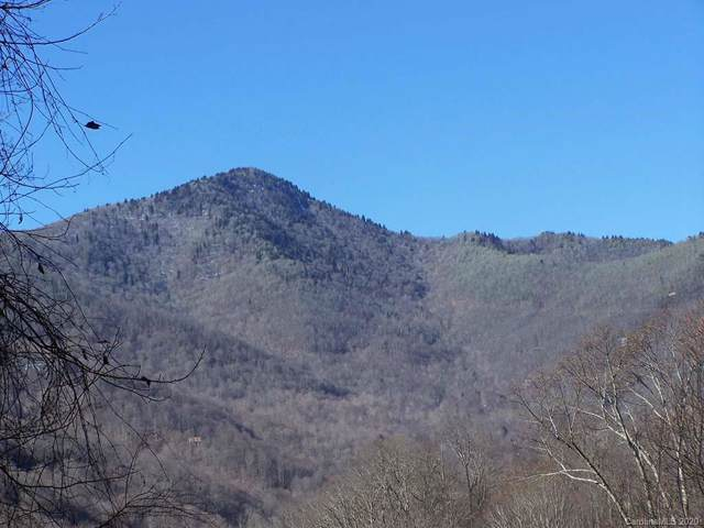 30 Hudson Valley Drive #10, Waynesville, NC 28786 (#3588231) :: Mossy Oak Properties Land and Luxury