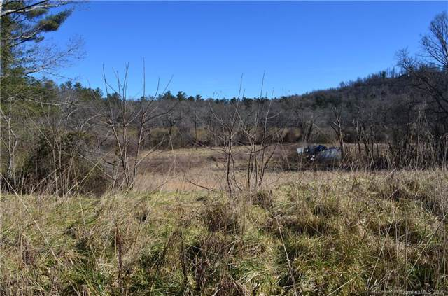 999 Oklawaha Circle, Hendersonville, NC 28739 (#3588235) :: Caulder Realty and Land Co.