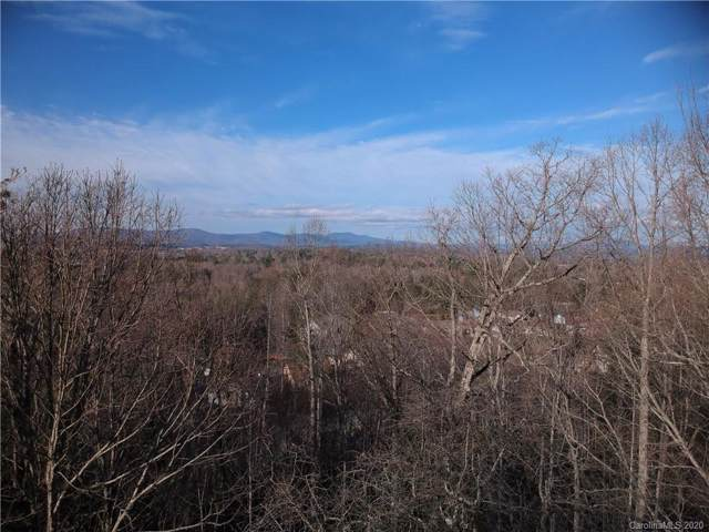 96 Turkey Roost Court, Hendersonville, NC 28739 (#3588290) :: Caulder Realty and Land Co.