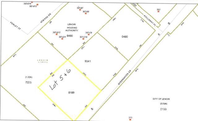 Lot 5 & 6 Greenhaven Drive 5 & 6, Lenoir, NC 28645 (#3588668) :: Rinehart Realty