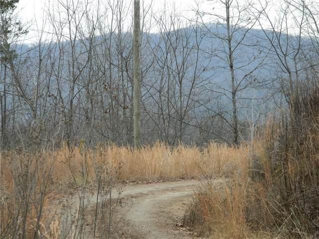 10 Acres Galax Lane, Lenoir, NC 28645 (#3588724) :: Rinehart Realty