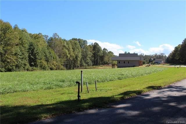 668 Skytop Farm Lane Lot 17, Hendersonville, NC 28791 (#3589011) :: LePage Johnson Realty Group, LLC