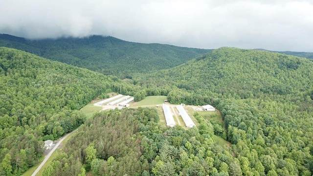 248 Land Cemetery Lane, Taylorsville, NC 28681 (#3589133) :: Cloninger Properties