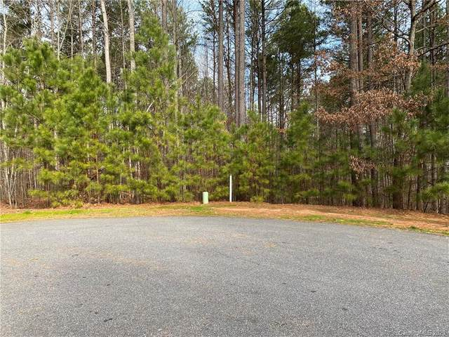 7300 Bay Cove Court, Denver, NC 28037 (#3589279) :: Carlyle Properties